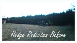 hedge reduction before